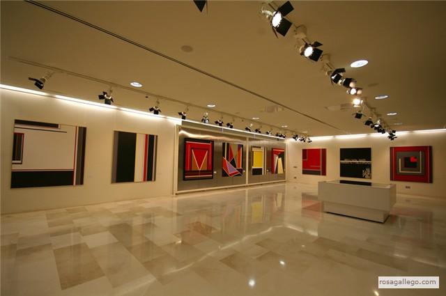 Ltimas exposiciones rosa gallego del peso for Sala 8 collado villalba